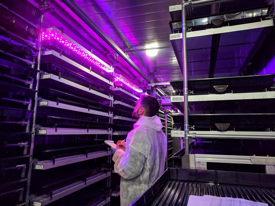 vertical-farming.jpg